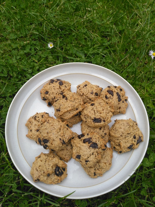 Cashew Chocolate Chip Cookies in the garden :-)